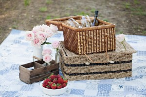 engagement-picnic-1